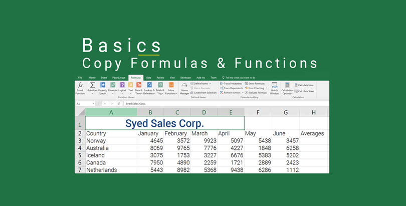 Copy formulas and functions in excel